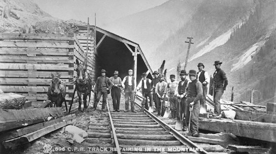 11 men and 2 donkeys pose for black and white photograph outside partly completed railway snowshed in summer.