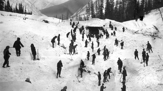 Black and white photo of 50+ men digging out railway snowshed from under avalanche debris.