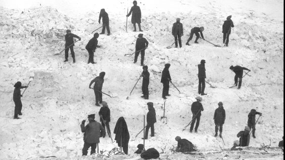 Black and white photograph of 23 rescuers on slope digging through avalanche debris.