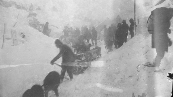 Black and white, close-up photograph of dozens of men and several dogs pulling sleighs with equipment down steep mountain side in snow storm.