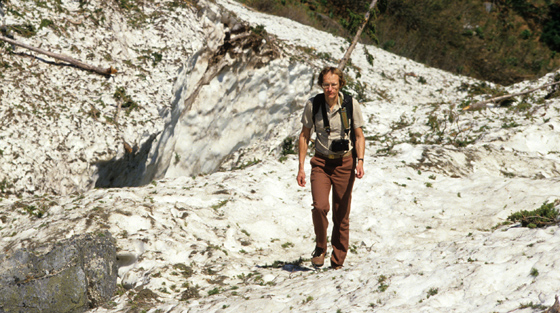 Colour photograph of man walking  through avalanche path run-out zone in mountain valley in summer.